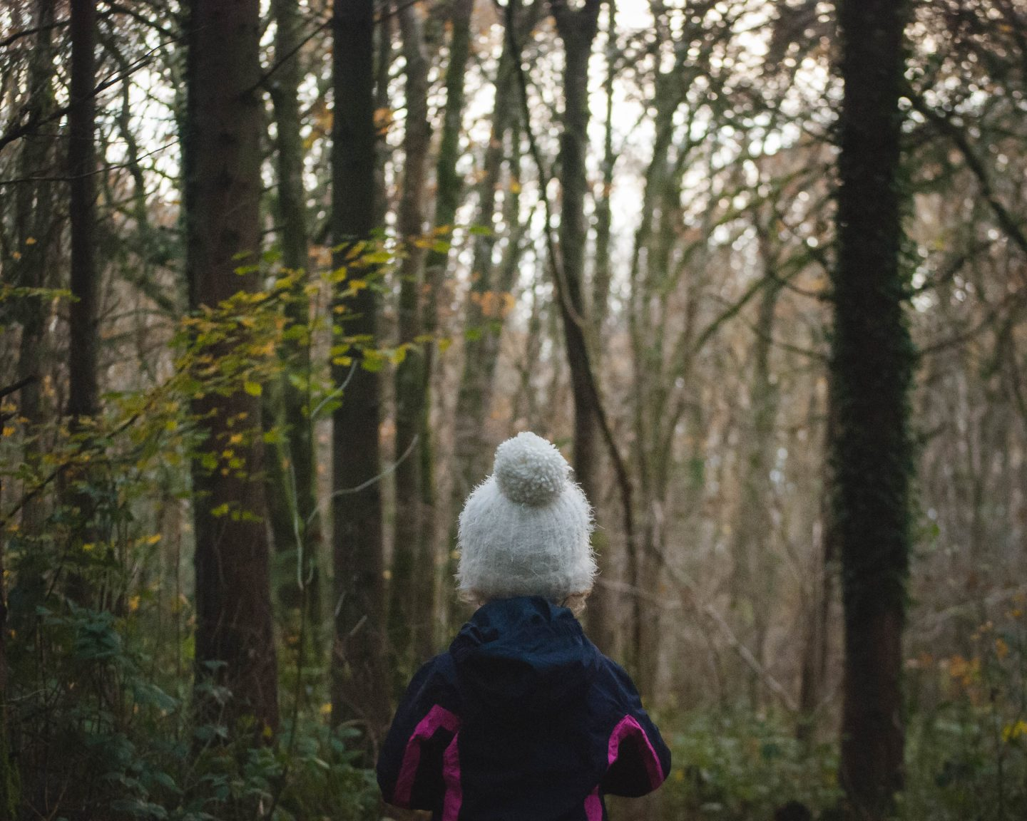 Winter Walks with Learning Resources